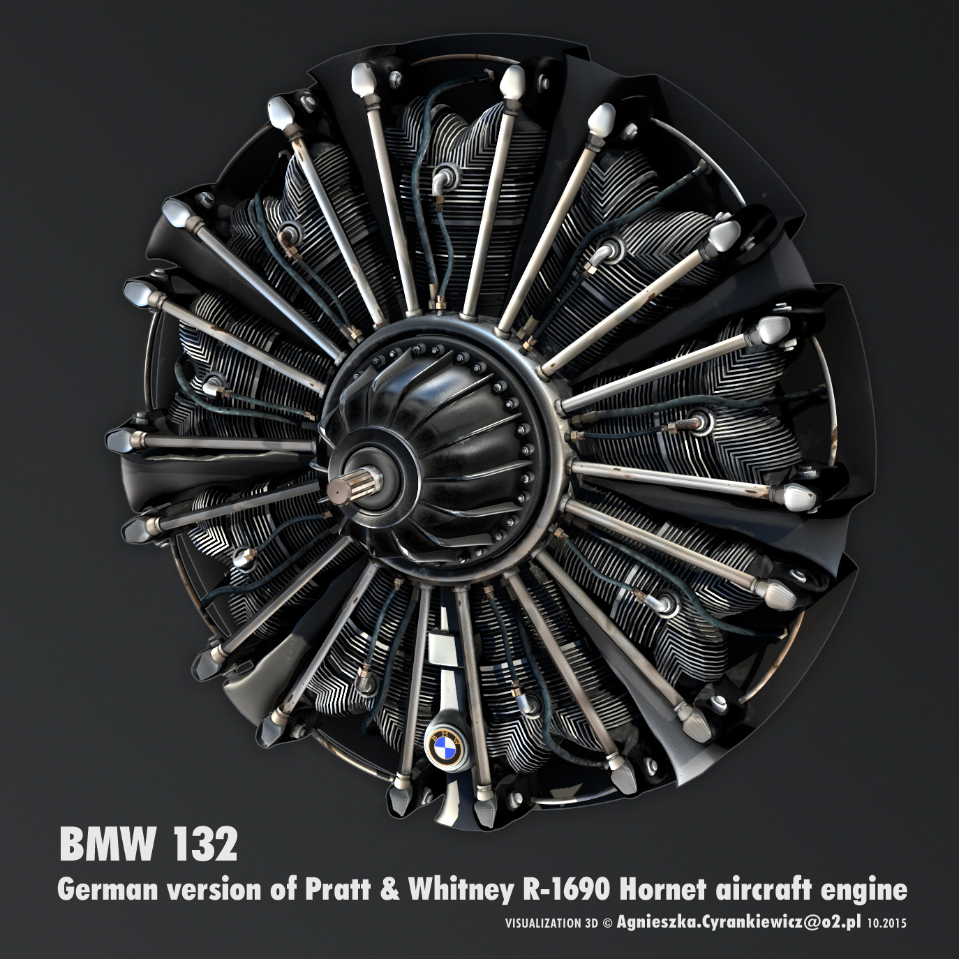 BMW-132 aircraft Engine